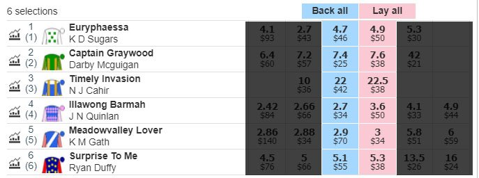 Betfair Interface for Lay Bets